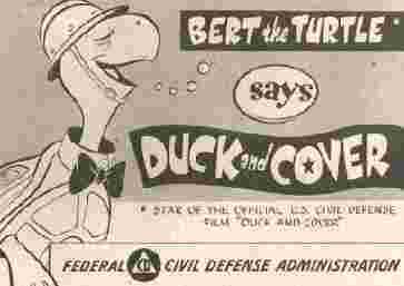 Duckandcover_bert_the_turtle_6k_1
